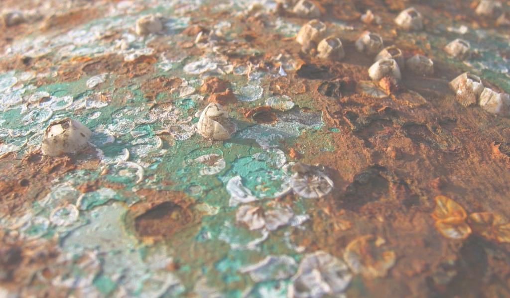 IMG-Corrosion